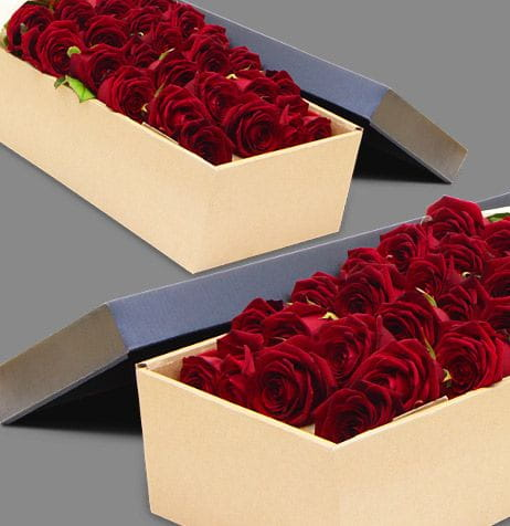 24 Red Roses Box