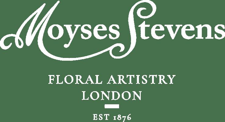 Moyses Stevence