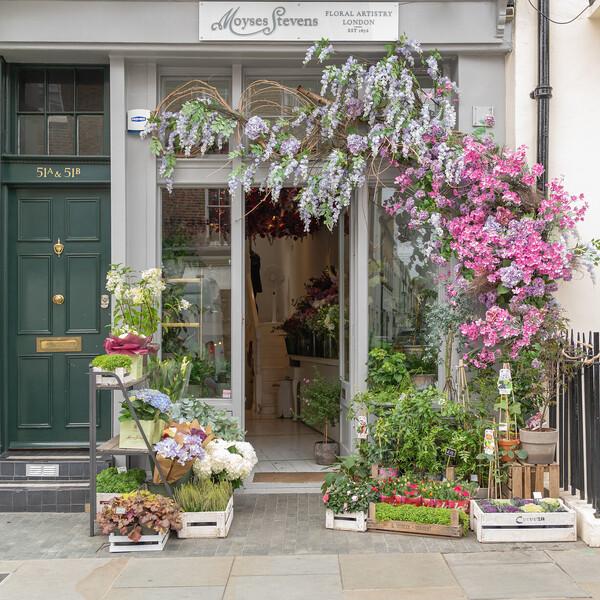 Belgravia Shop