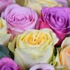 Sweet Rose & Moet