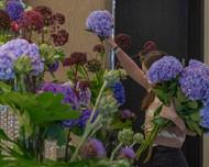 Florist and Gardener Opportunities: Join the team