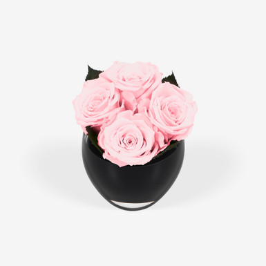 Infinite Rose Quartet Soft Pink
