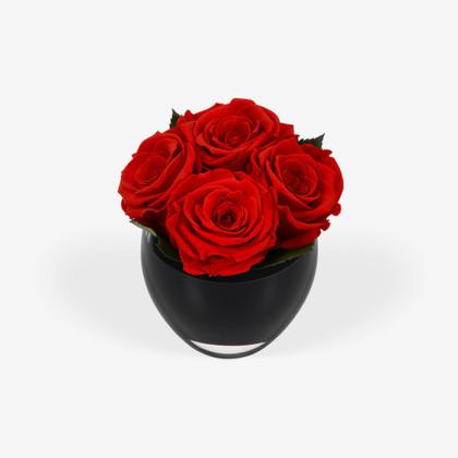 Infinite Rose Quartet Red