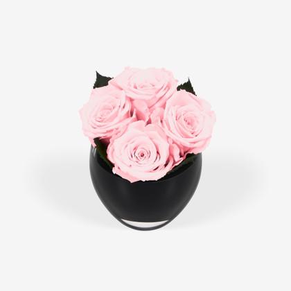Infinite Rose Quartet Hot Pink