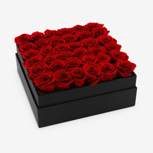 Infinite Rose Plaza Red