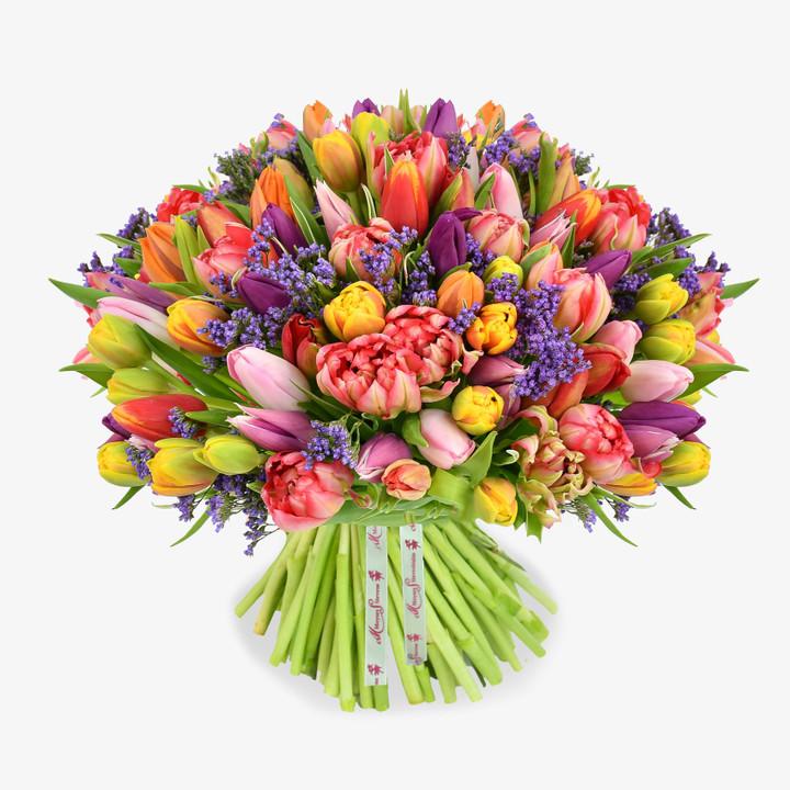 Tropical Tulips
