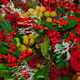 Berries and Roses