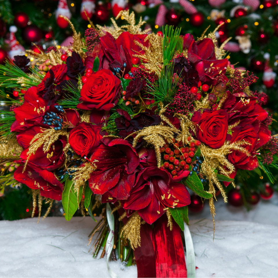 Christmas Flowers.Ruby Reds
