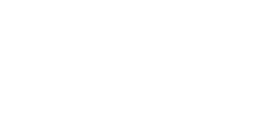 The Bazaar Inc