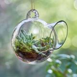 Small Hanging Glass Terrarium