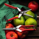 "Spring-Loaded Long-Nose ""Fruit Scissor"""