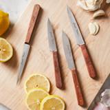 Vintage Paring Knives (Set of 4)