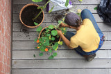 Industry Insight, Container Gardening: The First Steps