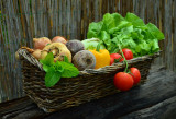 How to Grow Your Own Victory Garden