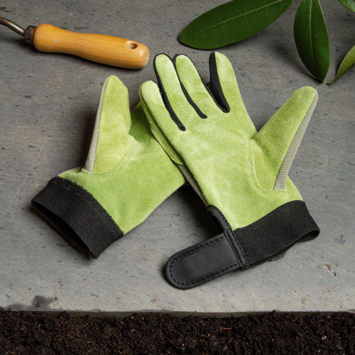 Sage Green Lady's Gloves - Lge.