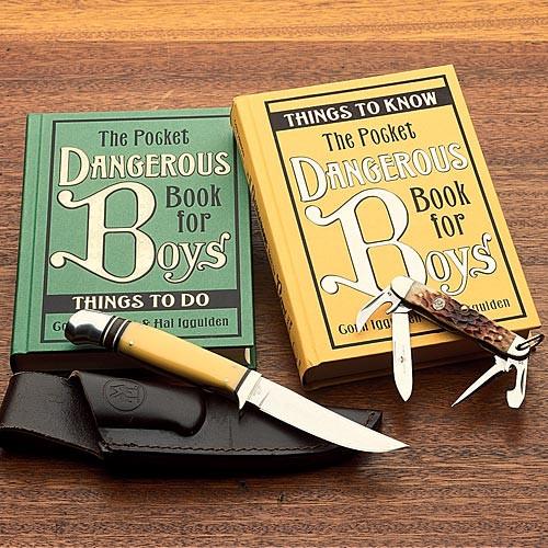 """The """"Dangerous Books for Boys"""" Series"""