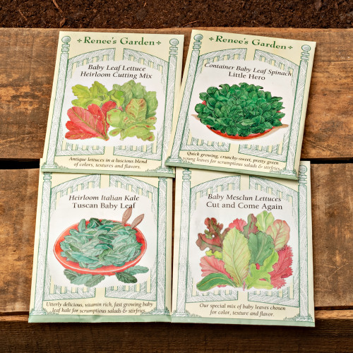 Select Seed Packets (4 Packets)