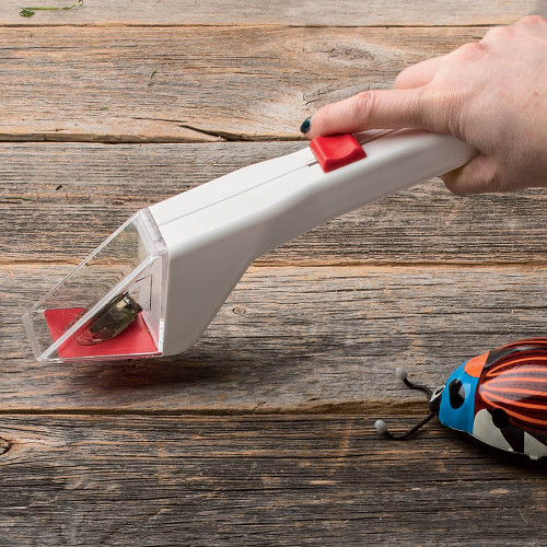 Sliding Trapdoor Insect Catcher