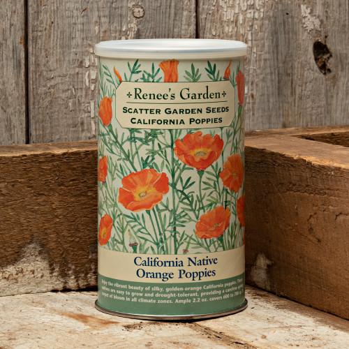 California Native Poppies