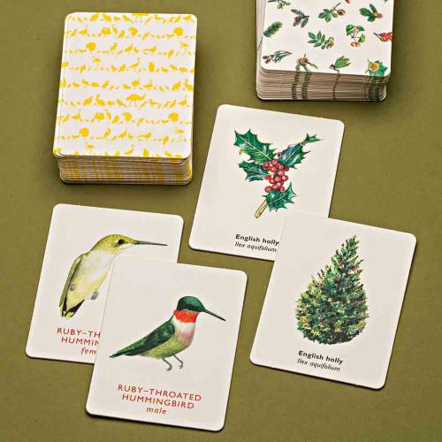 Match a Bird Card Game