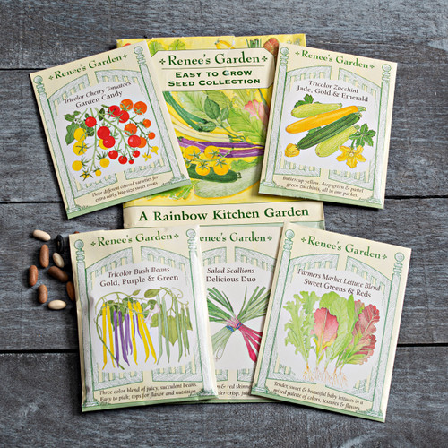 Rainbow Kitchen Vegetable Garden Seed Pack