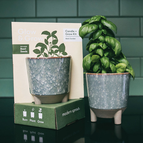Basil Candle & Planter - How Does Your Garden Grow?