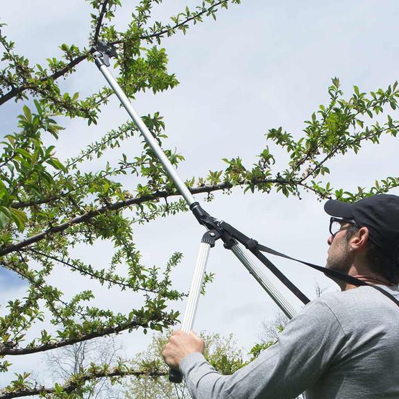 Arborist Long Reach Cutter/Trimmer