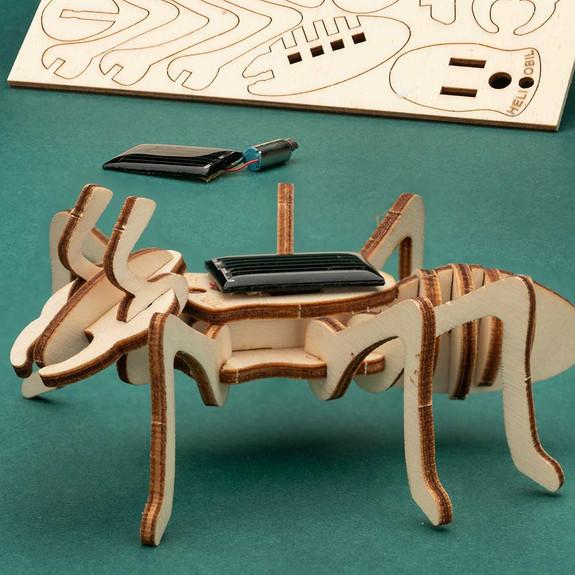 Solar Wooden Ant Kit