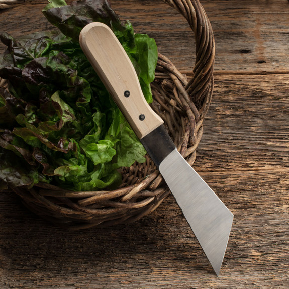 Lettuce Knife
