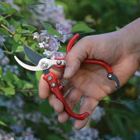 Small Bypass Pruners