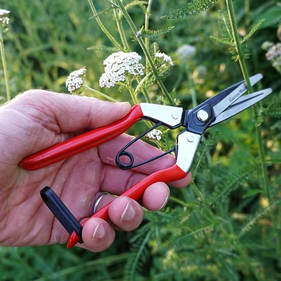 Pair of Handy Gardening Pruners