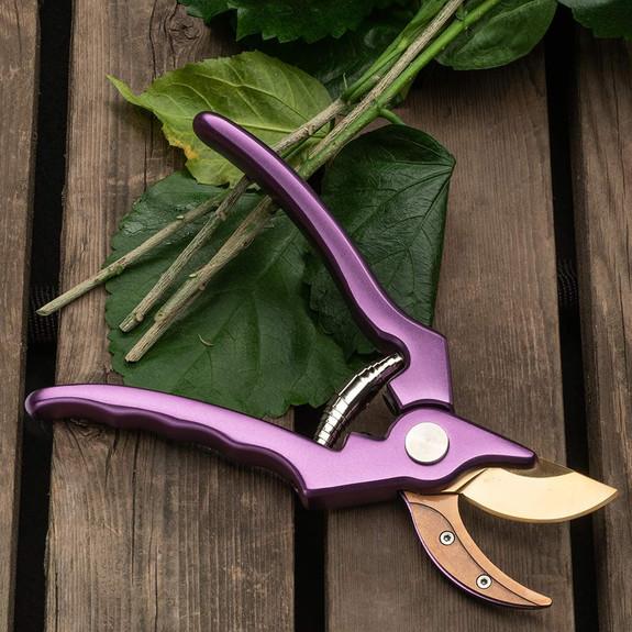 Purple Ultra-Sharp Pruner