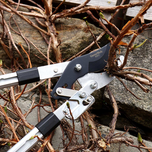 Premium Ratcheting Pruning Loppers