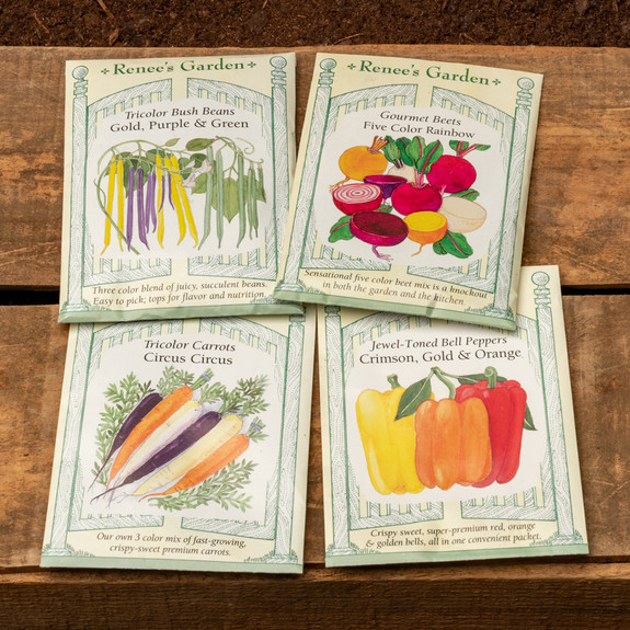 Vegetable Seed Packet Collections
