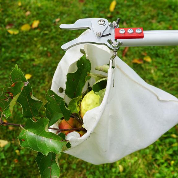 Telescopic Fruit Picker