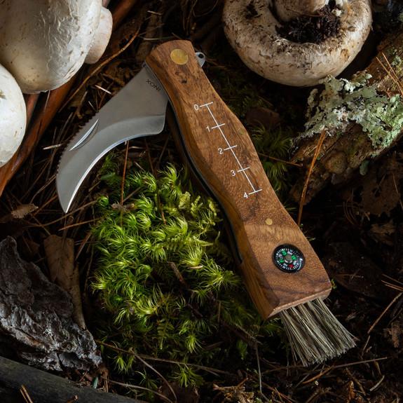 Redwood Mushroom Knife