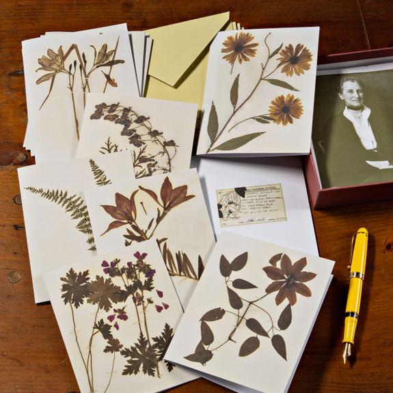 Botanical Inspired Notecard Set