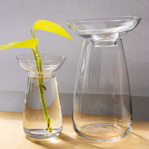 Large Aquaculture Vase