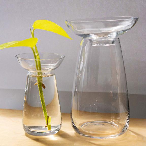 Hydroponic Aquaculture Vases
