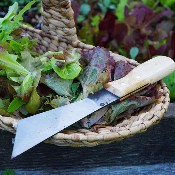 USA Made Lettuce Knife
