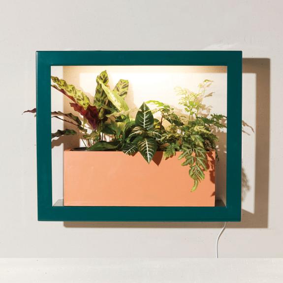 Emerald Standard Grow Frame