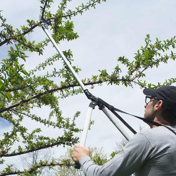 Arborist Long Reach Trimmer/Cutter