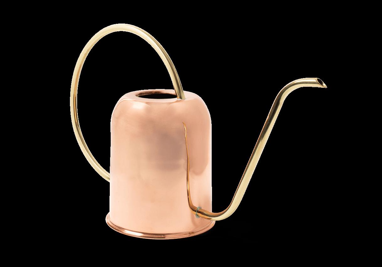 Copper & Brass Indoor Watering Can