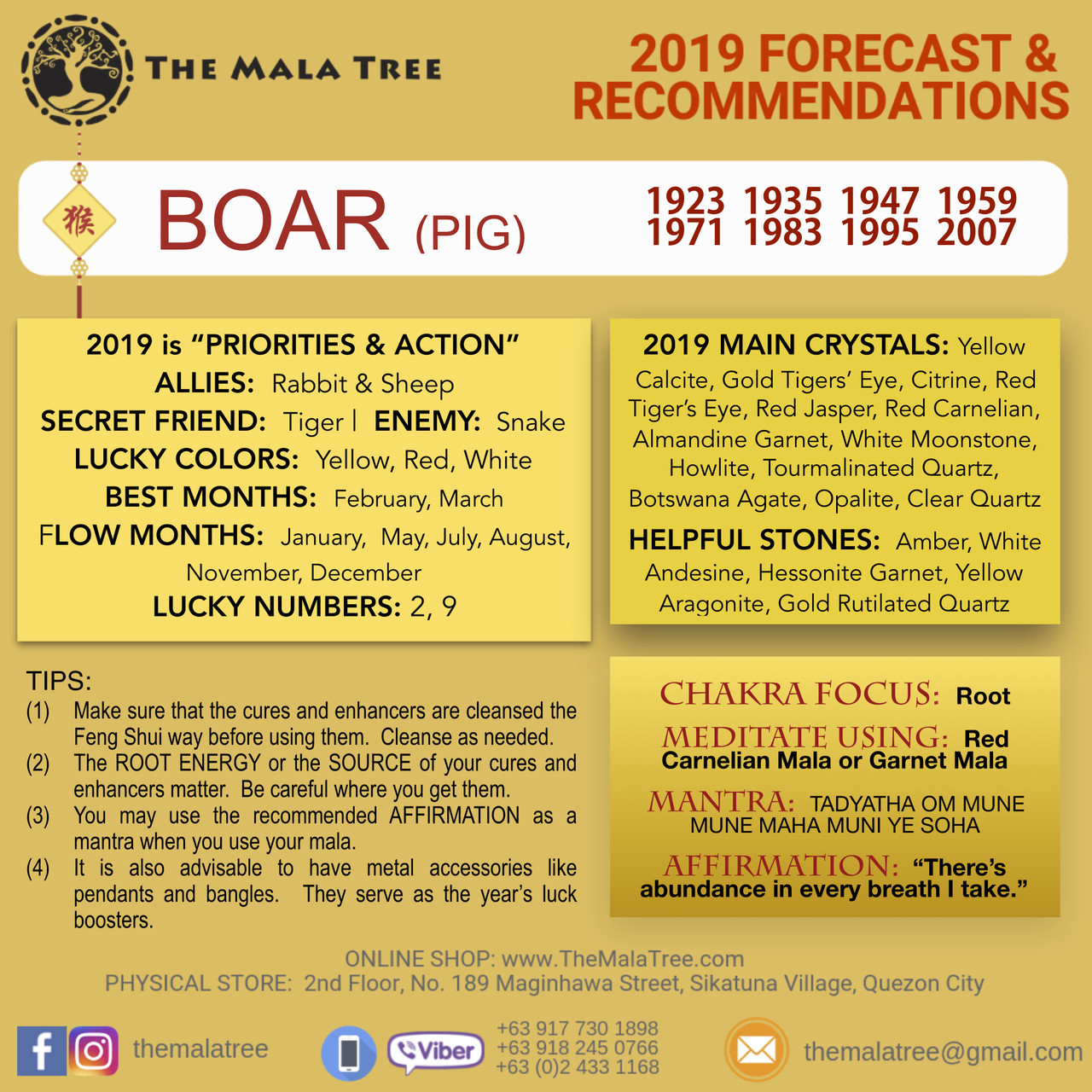 2019 Year of the Boar / Pig