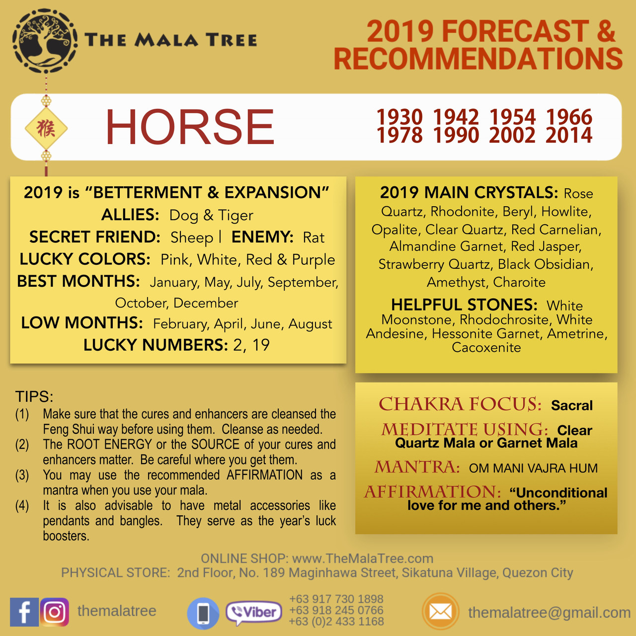 2019 Year of the Horse