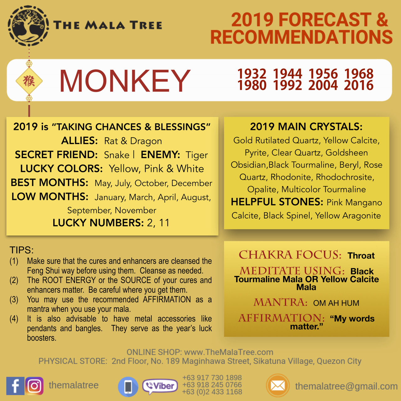 2019 Year of the Monkey