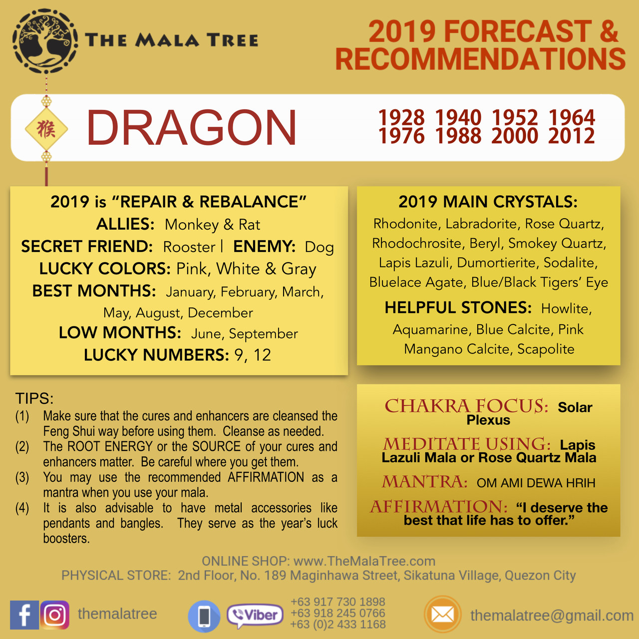 2019 Year of the Dragon