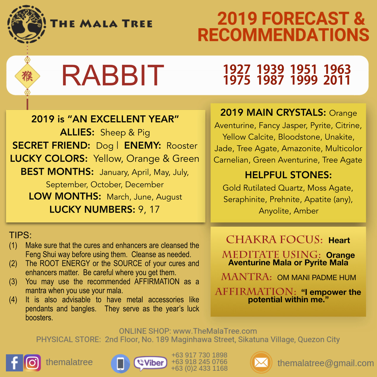 2019 Year of the Rabbit