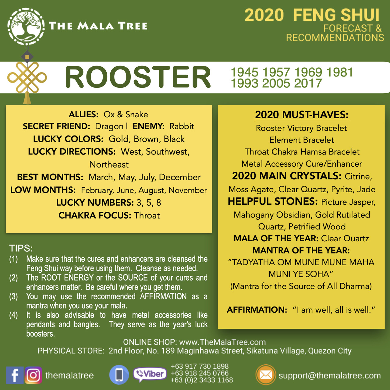 ROOSTER in 2020