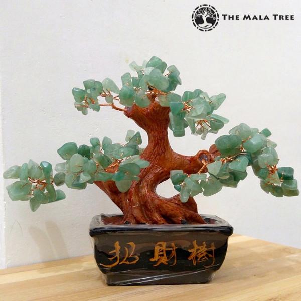 AVENTURINE Money Tree